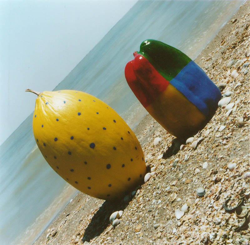 Paprika/meloen