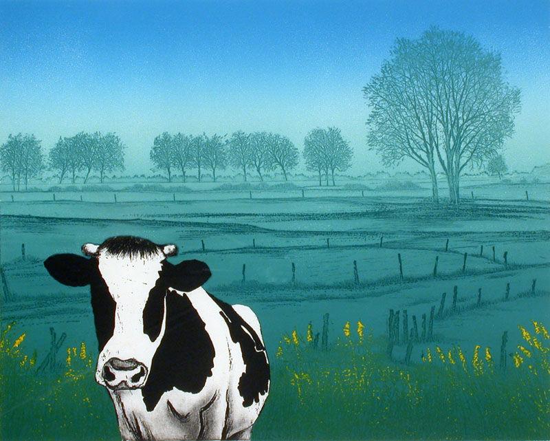 Koeien in polderland