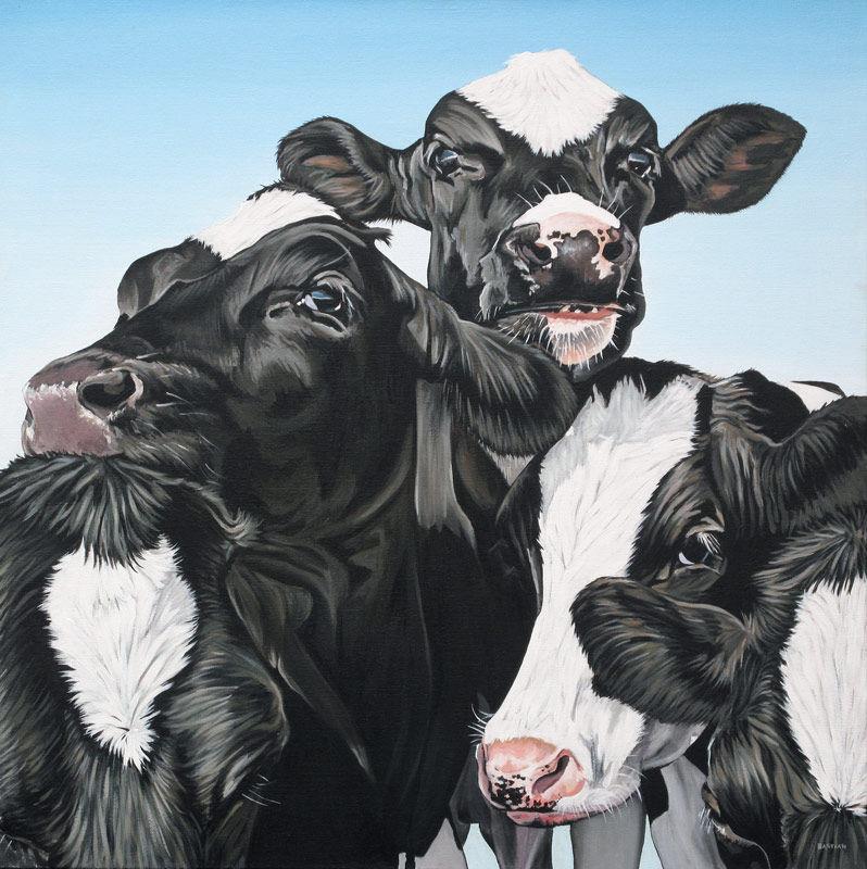 Vijf koeien