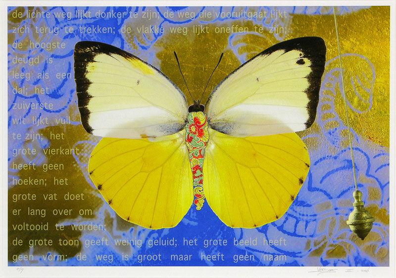 Vlinder IV