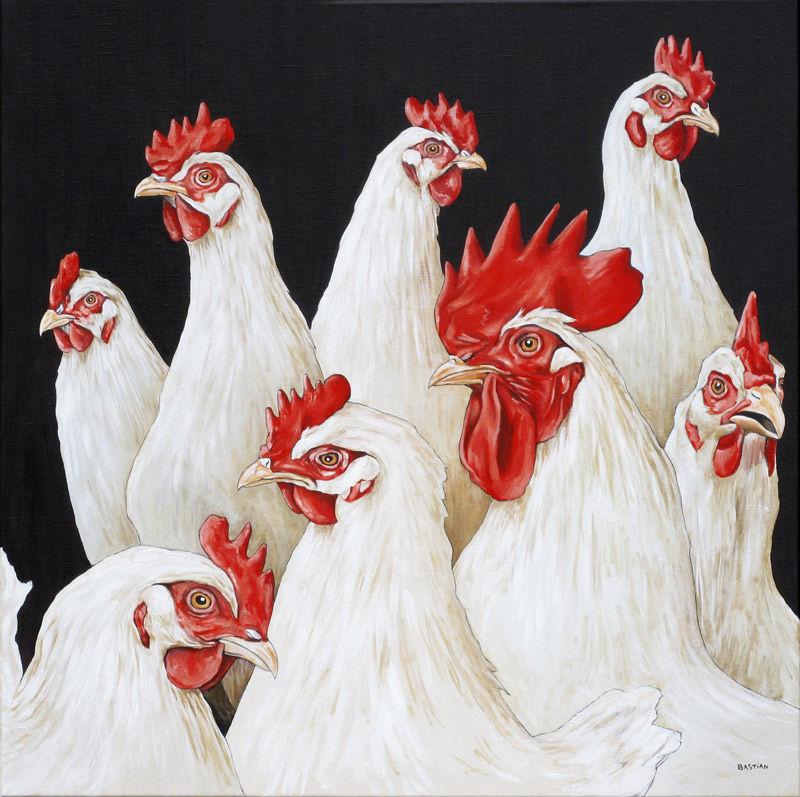 Haan en 7 kippen