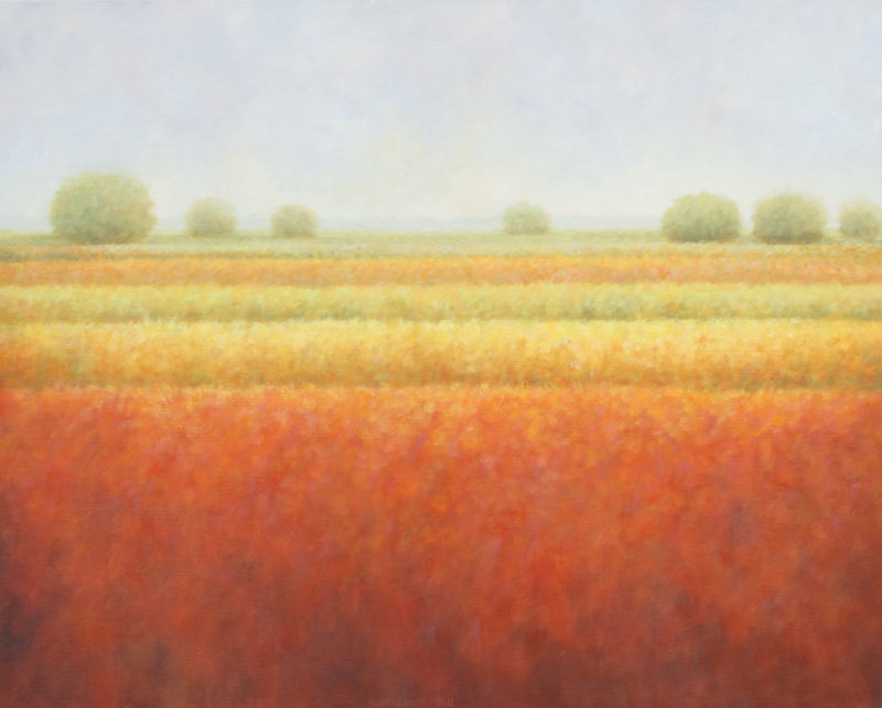 Gekleurde velden