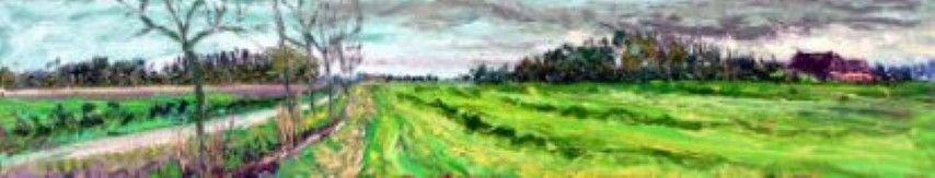Gemaaid veld met laan