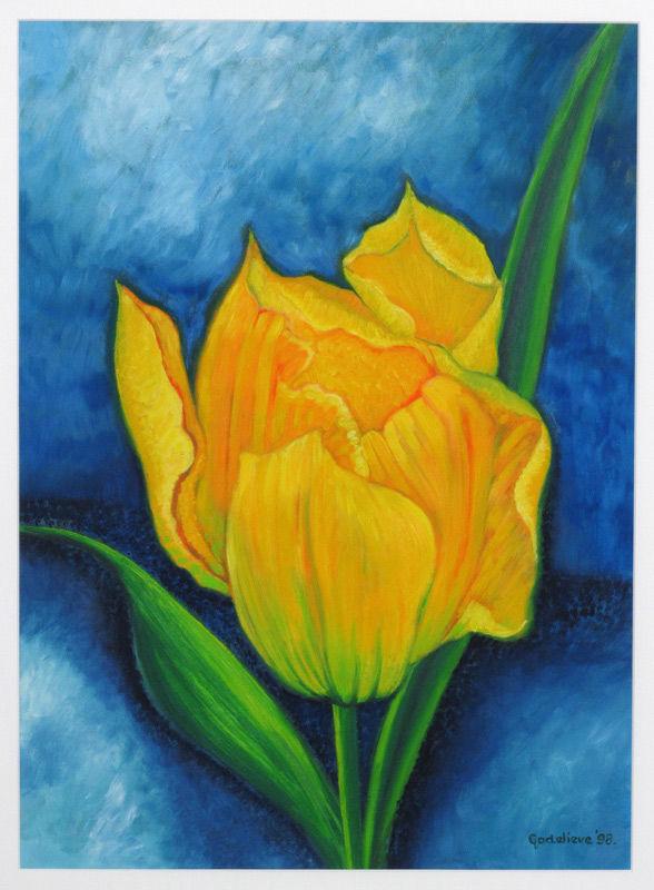 Gele tulp I