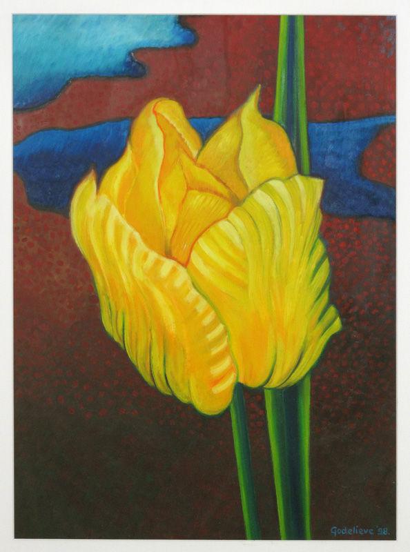 Gele tulp II