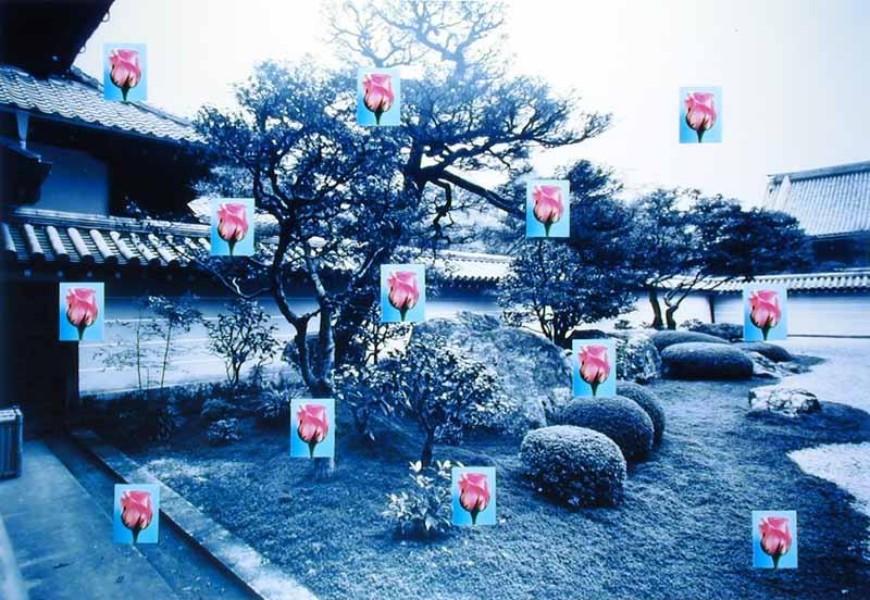 Nanzen-ji (small roses)