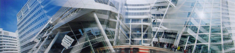 Stadhuis Den Haag