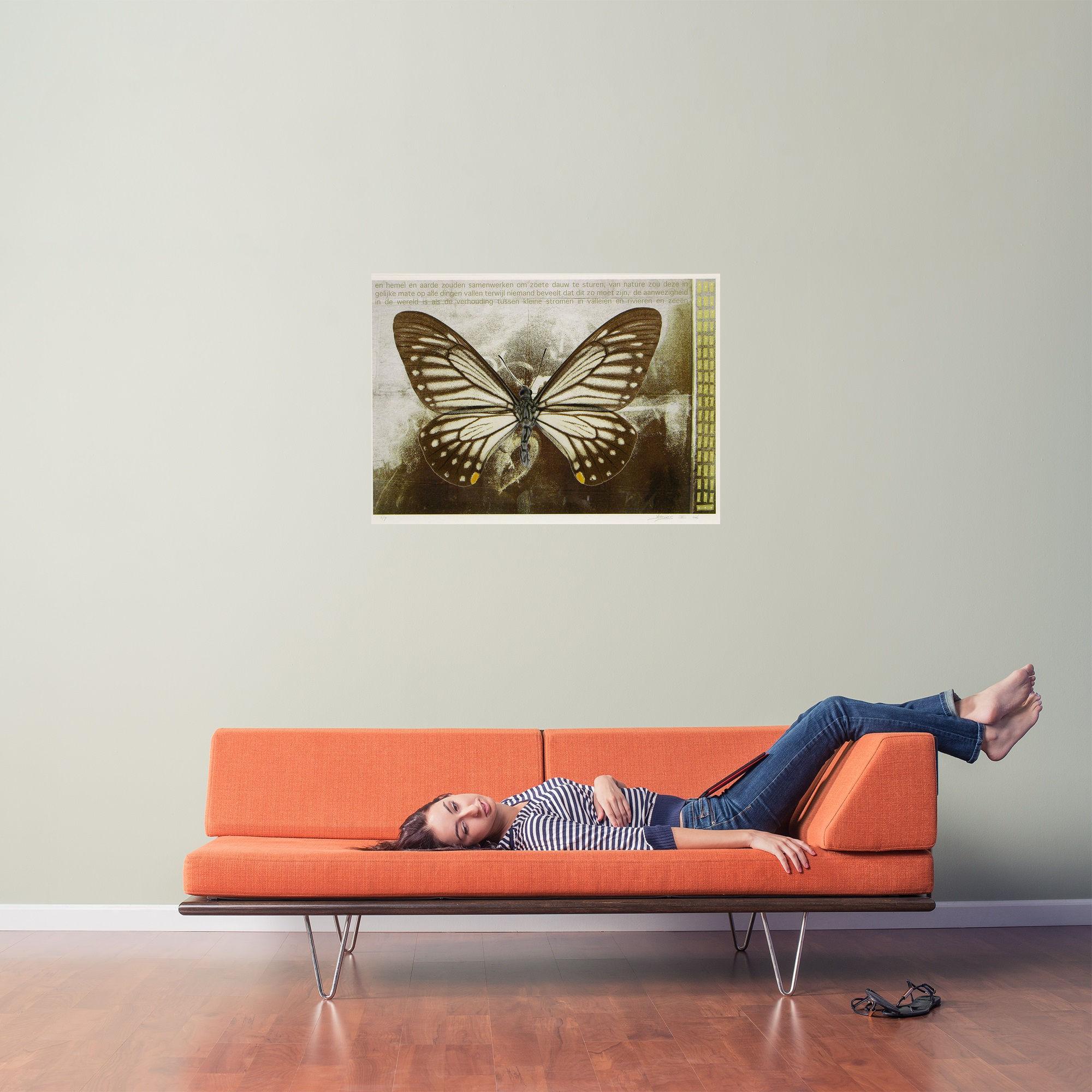 Vlinder V
